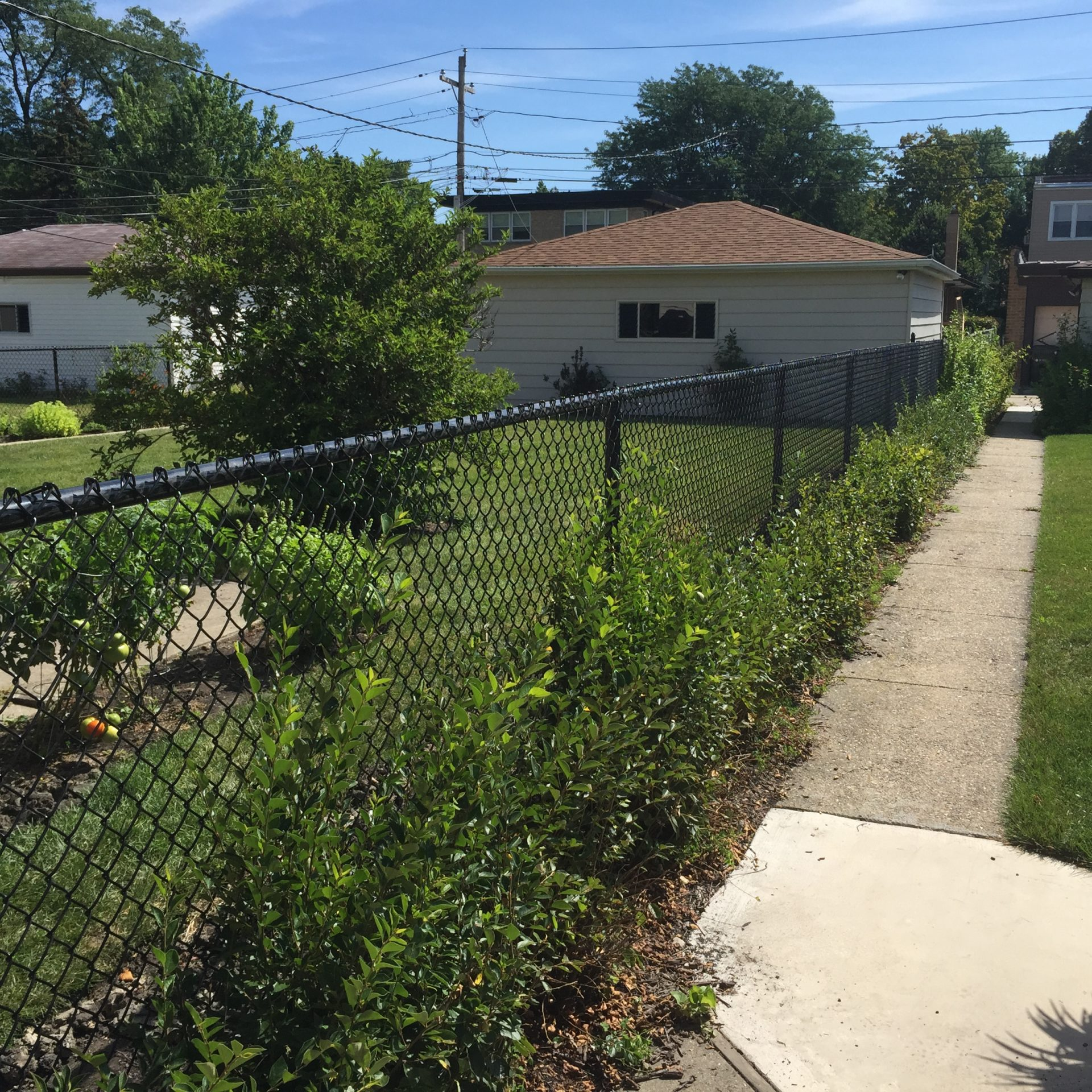 Chain Link Fence Installation Amp Repair Family Fences